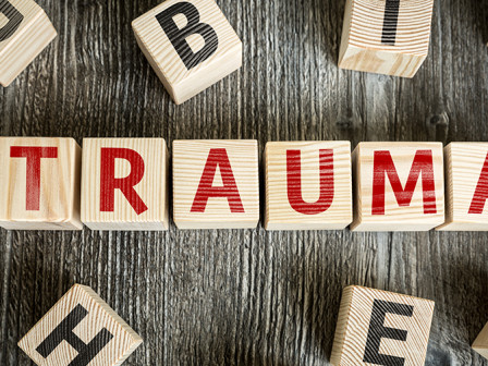 Trauma, Post Traumatic Stress and Accumulated Stress Injury: An Emotional, Behavioral and Neurological Perspective