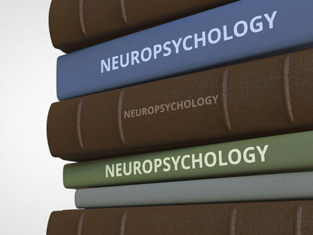 Neuropsychological Evaluations: An Introduction